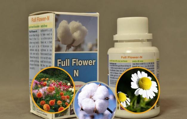 Full Flower – N